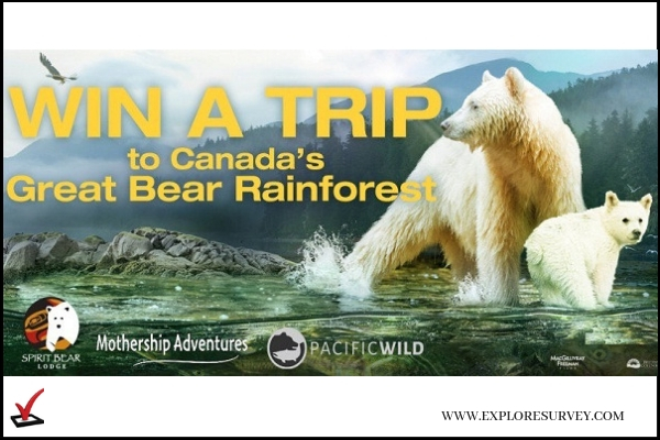 Great Bear Rainforest Sweepstakes Win Trip